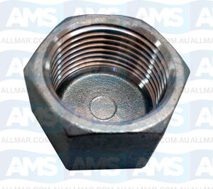 """316 Stainless Cap 2 1/2"""""""
